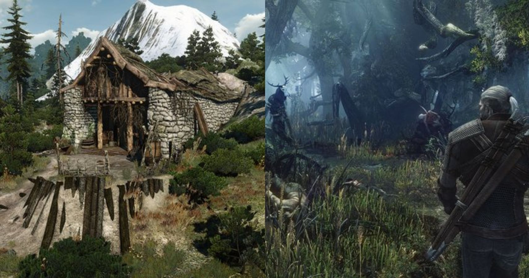10 Secret Side Quests Everyone Missed In The Witcher 3