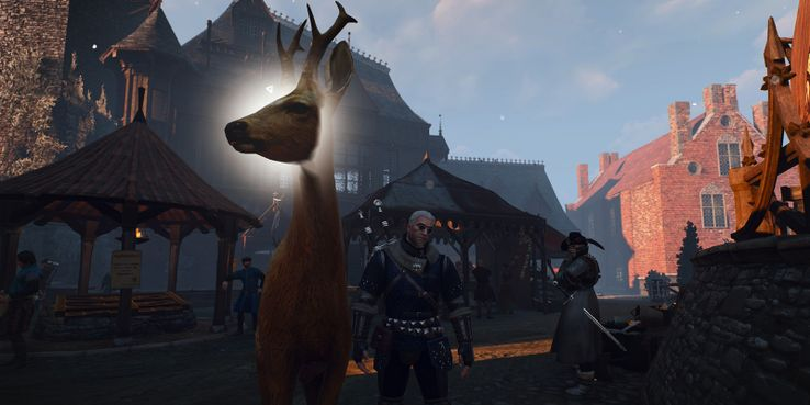 10 Things You Didn't Know You Could Do In The Witcher 3
