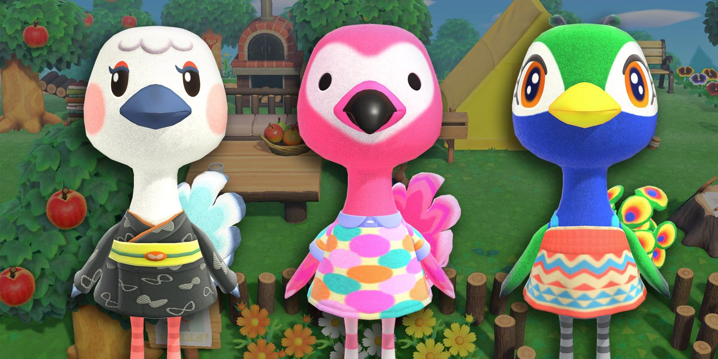 The Best and Worst Ostrich Characters in Animal Crossing ...