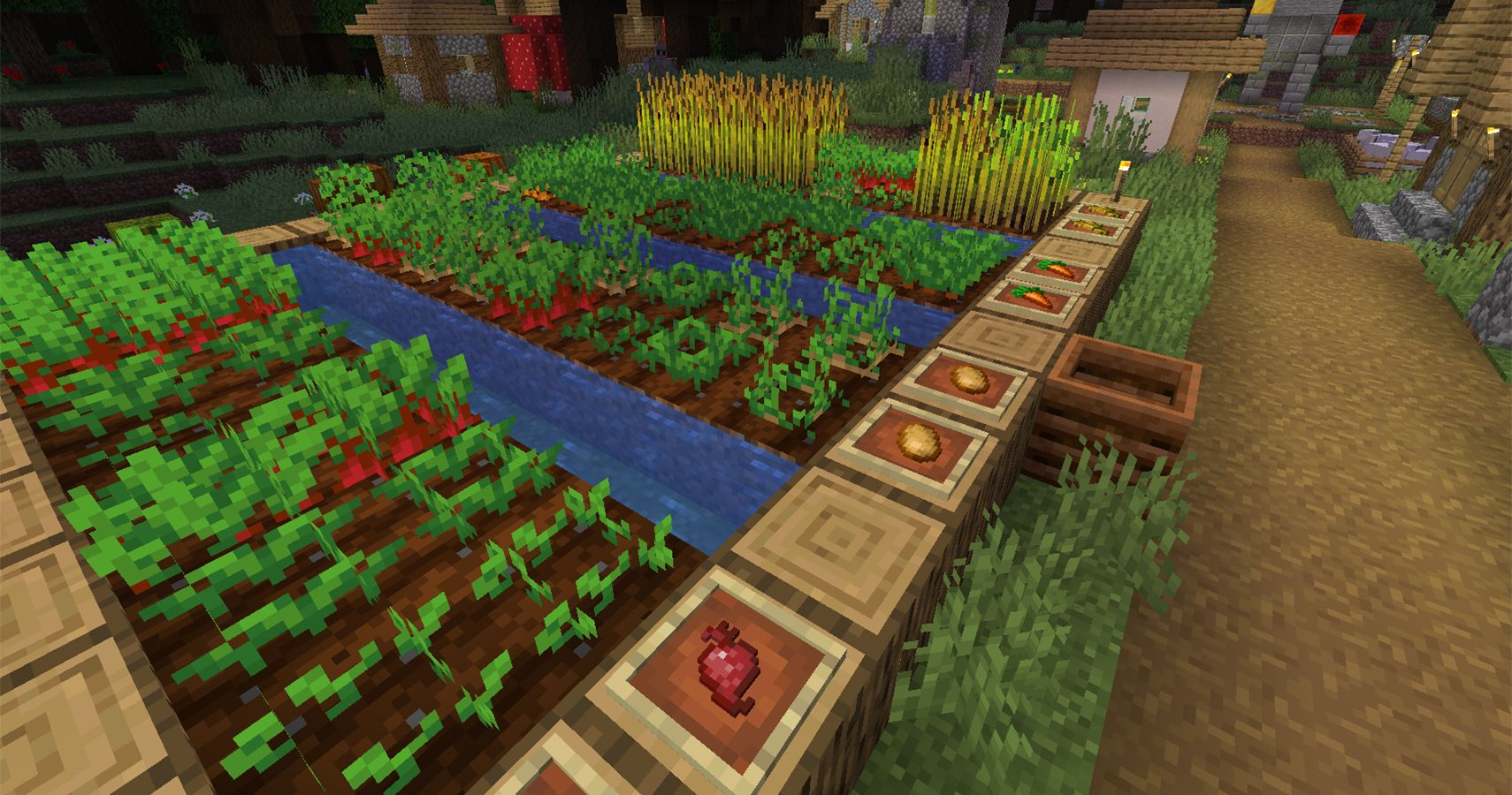 Minecraft: Everything You Need To Know About Growing Crops