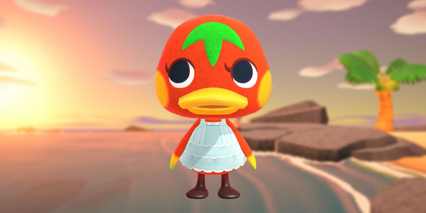 Animal Crossing: Everything You Need to Know About Ketchup (Birthday, Personality, & More)