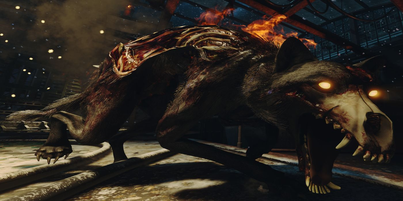 Call of Duty: Black Ops Cold War Zombies Players Discover Weird Rainbow Hellhound Bug